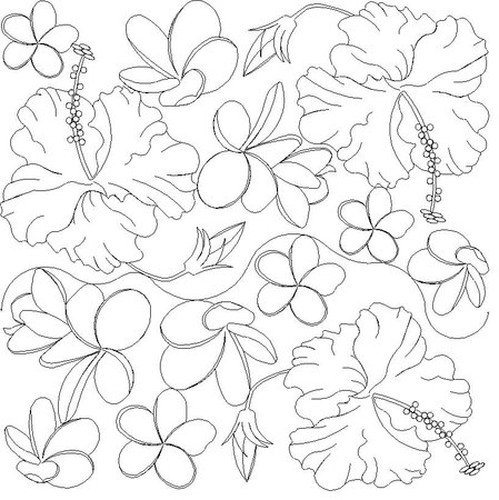Plumeria Flower Line Drawing View larger image ↑