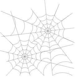 Shop Category Halloween Fall Product Spider Web